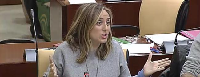 Tras la denuncia del Partido Popular sobre los problemas de transporte de los alumnos y alumnas de colegio Luis Pastor, la Junta de Andalucía ha reaccionado abriendo un expediente  sancionador a la empresa concesionaria y anunciando un nuevo concurso público.