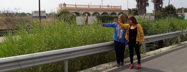 Los populares   presentaron la iniciativa sobre limpieza de las Ramblas en el último pleno de Motril celebrado el pasado 28 de julio. La iniciativa de los populares solicita la limpieza de  las Ramblas, tanto en el municipio motrileño como en sus anejos,  tales como las ramblas del Rejón y de los Callejones de Carchuna, la de Villanueva en Torrenueva y las ramblas de las Brujas y de los Álamos y Puntalón en Motril.